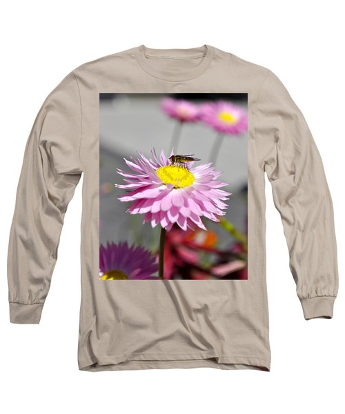 Long Sleeve T-Shirt featuring the photograph Pollination by Cathy Mahnke