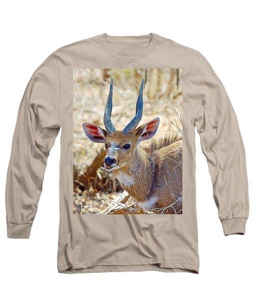 Portrait Of A Bushbuck In Kruger National Park-south Africa  Long Sleeve T-Shirt