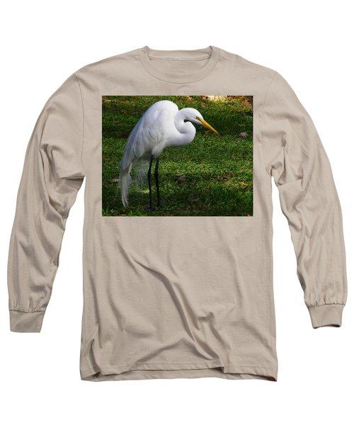 Posing Prettily Long Sleeve T-Shirt