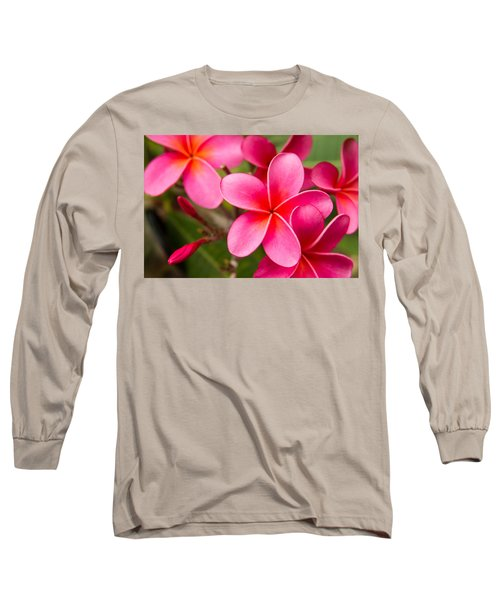 Pretty Hot In Pink Long Sleeve T-Shirt by Denise Bird