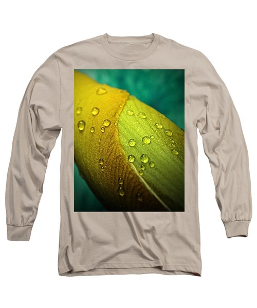 Rain Wrapped Long Sleeve T-Shirt by Chris Berry
