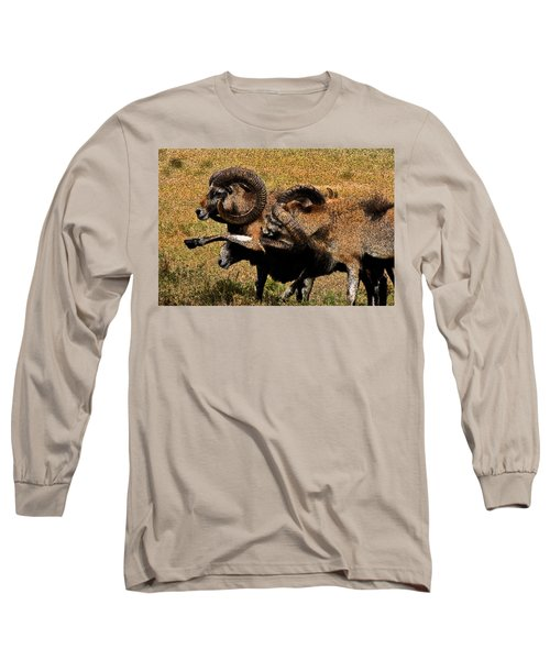 Long Sleeve T-Shirt featuring the photograph Rams At Half-time by Doc Braham