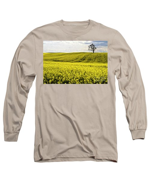 Rape Landscape With Lonely Tree Long Sleeve T-Shirt by Heiko Koehrer-Wagner