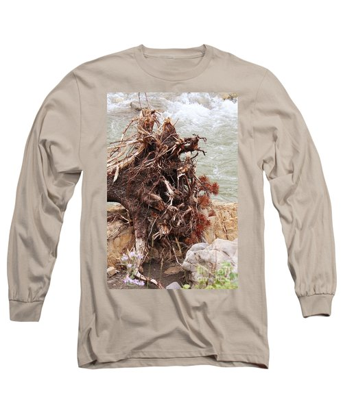Long Sleeve T-Shirt featuring the photograph Ravaged Roots by Ann E Robson