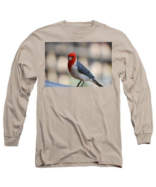 Red Crested Cardinal Long Sleeve T-Shirt by DejaVu Designs