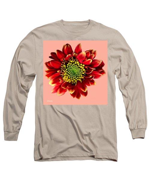 Red Gerbera Daisy Painting Long Sleeve T-Shirt