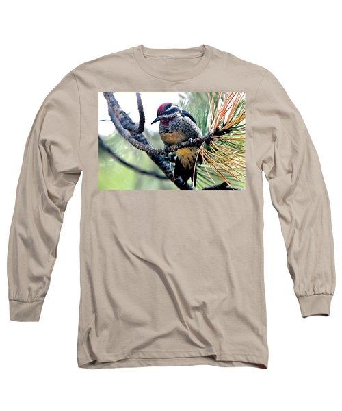 Red-naped Sapsucker On Pine Tree Long Sleeve T-Shirt