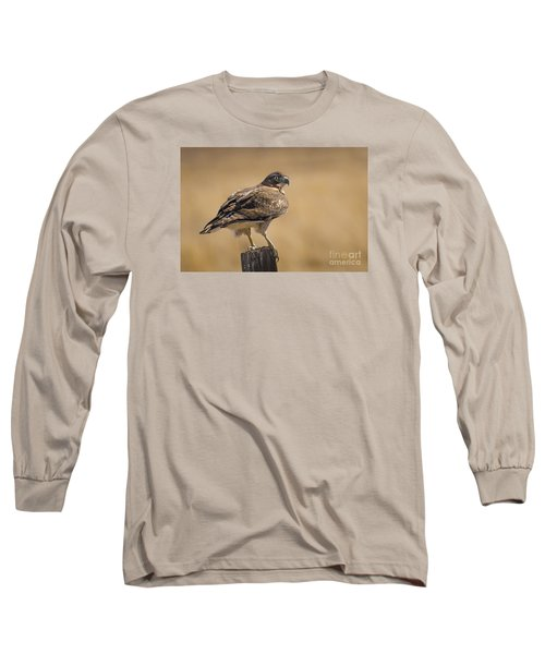 Red Tailed Hawk Watching Long Sleeve T-Shirt