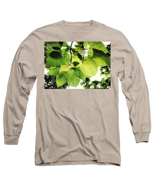 Catalpa Branch Long Sleeve T-Shirt