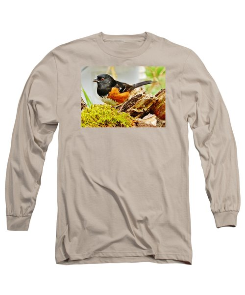 Long Sleeve T-Shirt featuring the photograph Spotted Towhee by VLee Watson