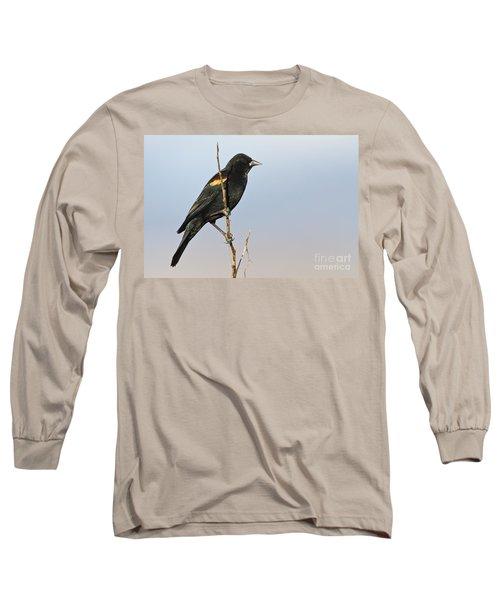 Rwbb On Stick Long Sleeve T-Shirt by Bryan Keil
