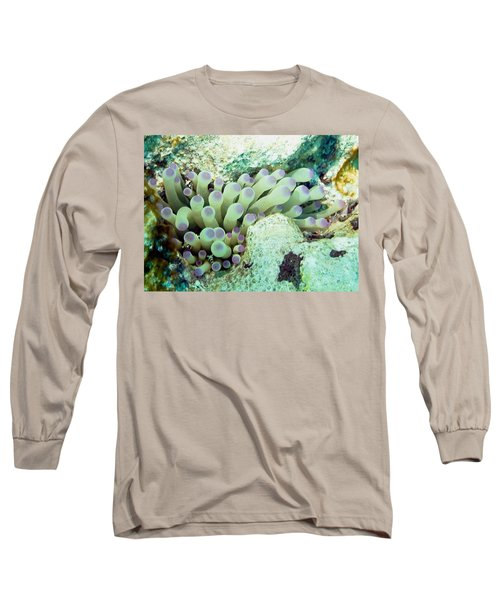 Sea Anemone With Squat Anemone Shrimp Family Long Sleeve T-Shirt by Amy McDaniel