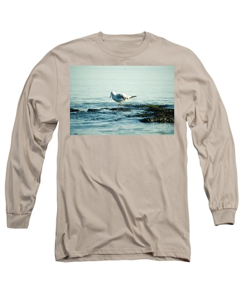 Long Sleeve T-Shirt featuring the photograph Seagull Hunting by Yew Kwang