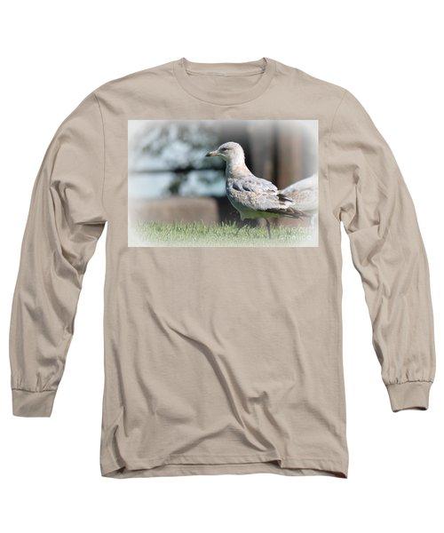 Seagulls 1 Long Sleeve T-Shirt