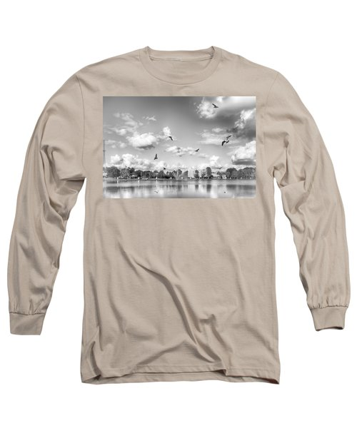 Seagulls Long Sleeve T-Shirt by Howard Salmon