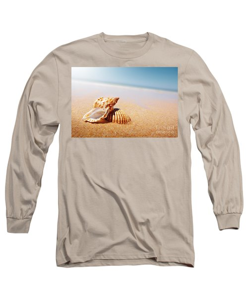 Seashell And Conch Long Sleeve T-Shirt by Carlos Caetano