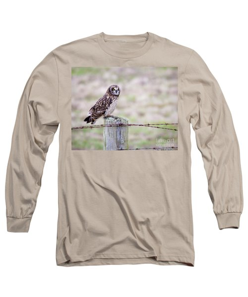 Short Eared Owl Boundary Bay Long Sleeve T-Shirt