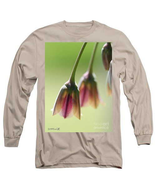 Sicilian Honey Garlic Long Sleeve T-Shirt by J McCombie
