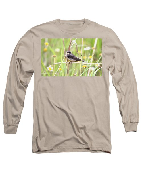 Long Sleeve T-Shirt featuring the photograph Sitin' Pretty by Elizabeth Winter