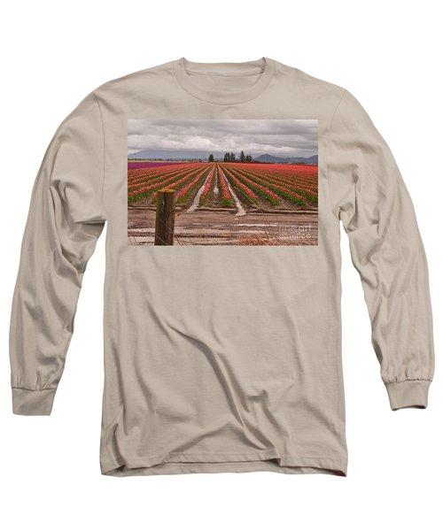 Skagit Valley Tulip Farmlands In Spring Storm Art Prints Long Sleeve T-Shirt by Valerie Garner
