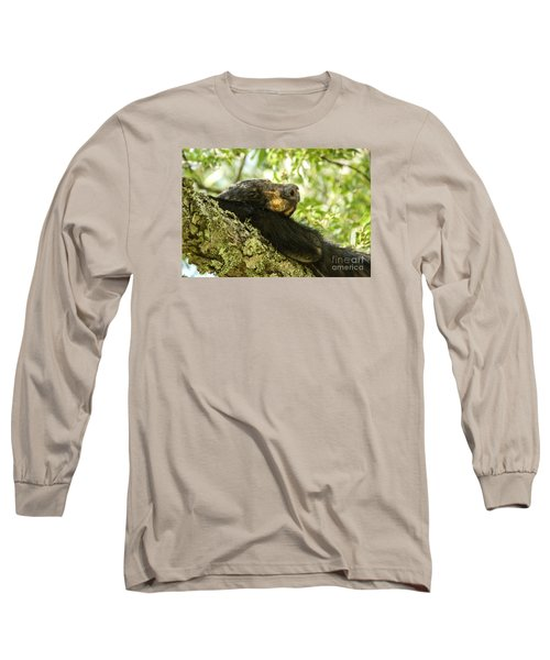 Sleeping Bear Long Sleeve T-Shirt by Debbie Green