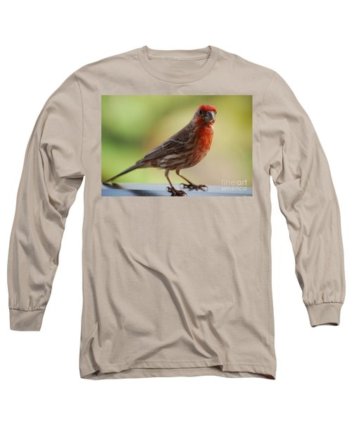 Small Brown And Red Bird Long Sleeve T-Shirt by DejaVu Designs