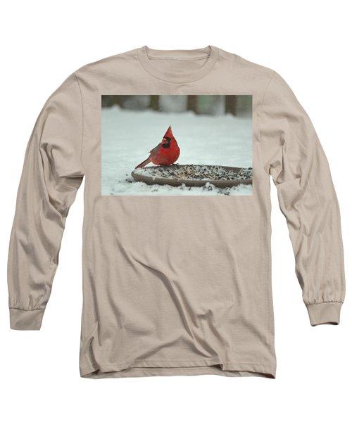 Snow Cardinal Long Sleeve T-Shirt