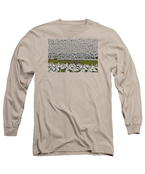 Snow Geese By The Thousands Long Sleeve T-Shirt by Valerie Garner
