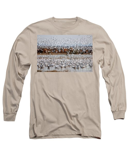 Snow Geese No.4 Long Sleeve T-Shirt