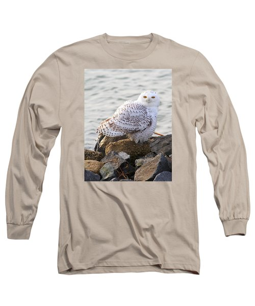 Snowy Owl In New Jersey Long Sleeve T-Shirt