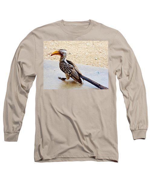 Southern Yellow-billed Hornbill In Kruger National Park-south Africa Long Sleeve T-Shirt