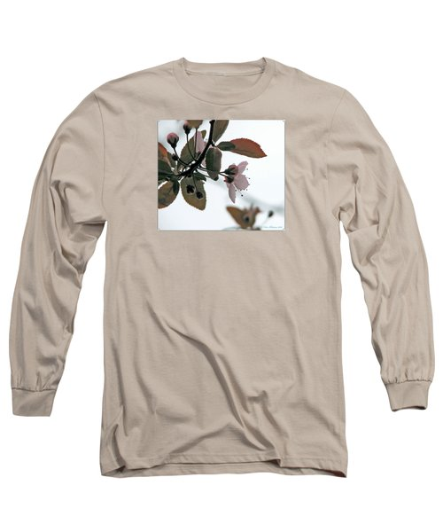 Spring Comes Softly Long Sleeve T-Shirt by Chris Anderson