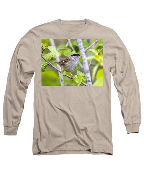 Spring Scene Long Sleeve T-Shirt