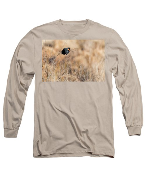 Springtime Song Long Sleeve T-Shirt by Bill Wakeley
