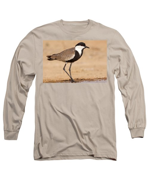 Spur-winged Lapwing Vanellus Spinosus Long Sleeve T-Shirt by Eyal Bartov