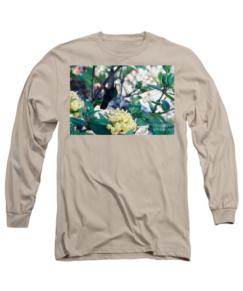 St. Lucian Hummingbird Long Sleeve T-Shirt