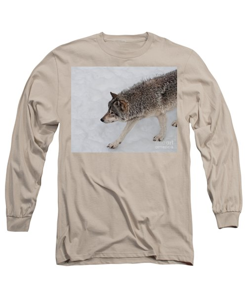 Long Sleeve T-Shirt featuring the photograph Stalker by Bianca Nadeau