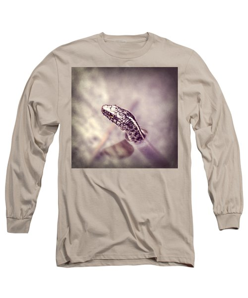 Long Sleeve T-Shirt featuring the photograph Stony Stare by Melanie Lankford Photography
