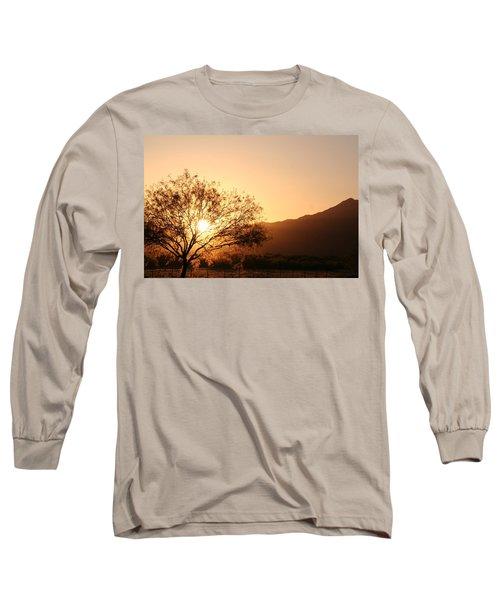 Sun Tree Long Sleeve T-Shirt