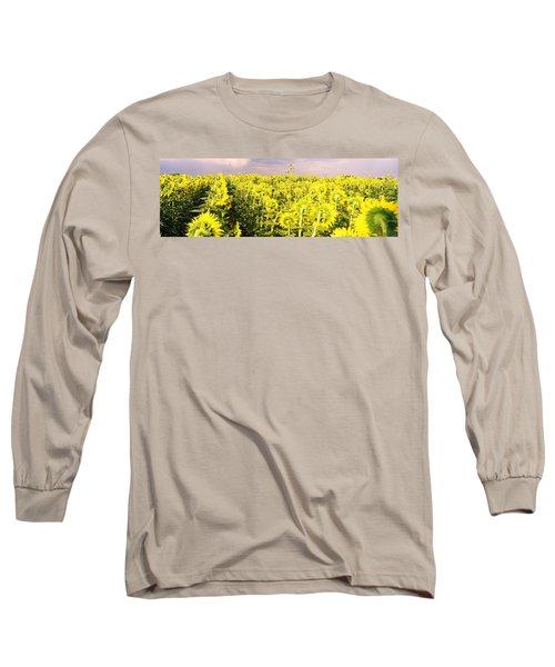 Sunflower Field, Colorado, Usa Long Sleeve T-Shirt