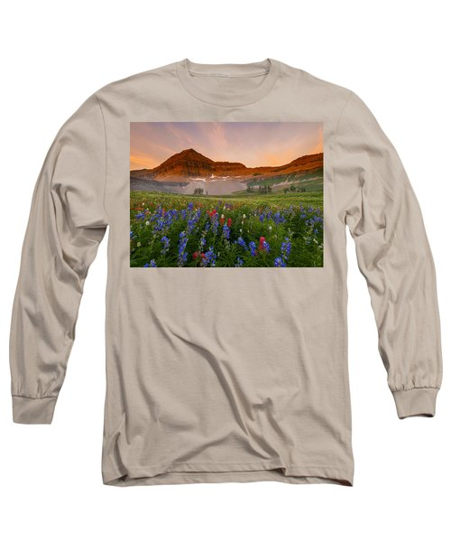 Sweeping Gaze Long Sleeve T-Shirt