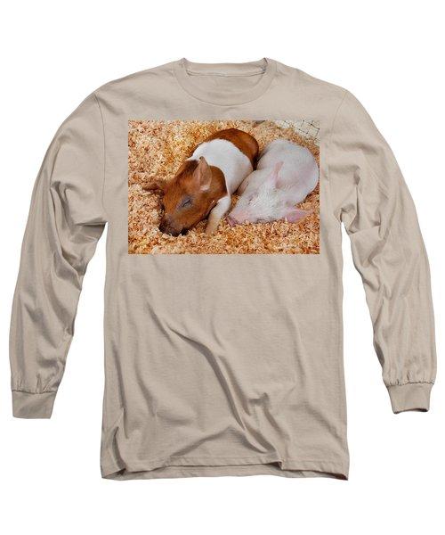 Sweet Piglets Nap Art Prints Long Sleeve T-Shirt by Valerie Garner