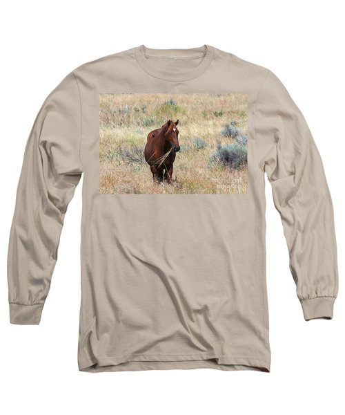 The Odd Couple Long Sleeve T-Shirt by Mike  Dawson