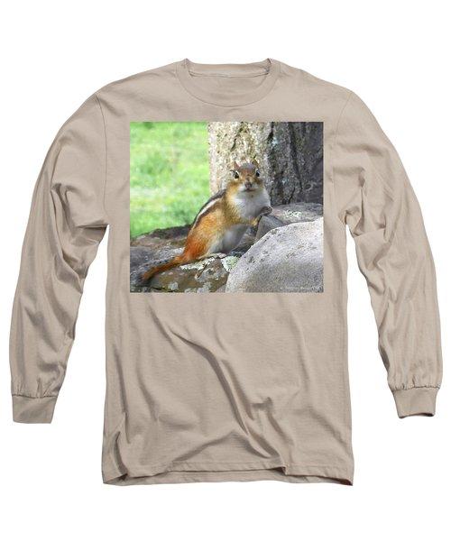 The Watching Chipmunk Reclines Long Sleeve T-Shirt