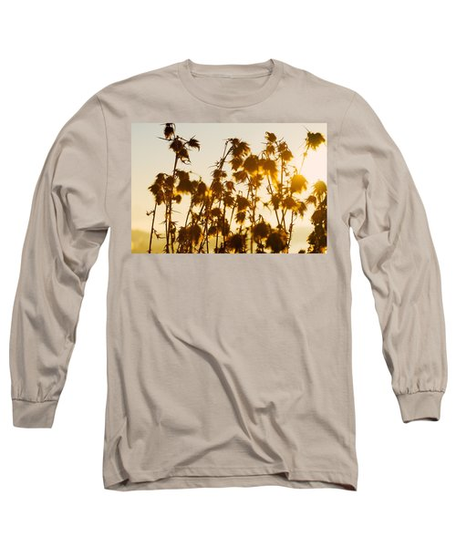 Long Sleeve T-Shirt featuring the photograph Thistles In The Sunset by Chevy Fleet