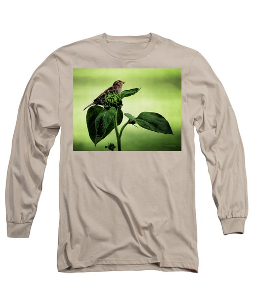 Thoughtful Sparrow Long Sleeve T-Shirt