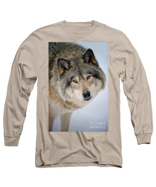 Timber Wolf Pictures 255 Long Sleeve T-Shirt