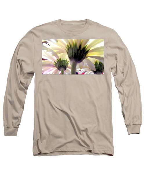 Tribute To Daisies Long Sleeve T-Shirt by Danielle  Parent