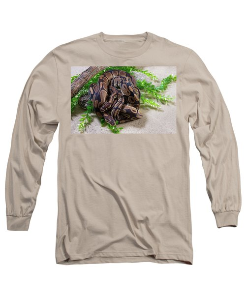 Two Burmese Pythons Python Bivittatus Long Sleeve T-Shirt