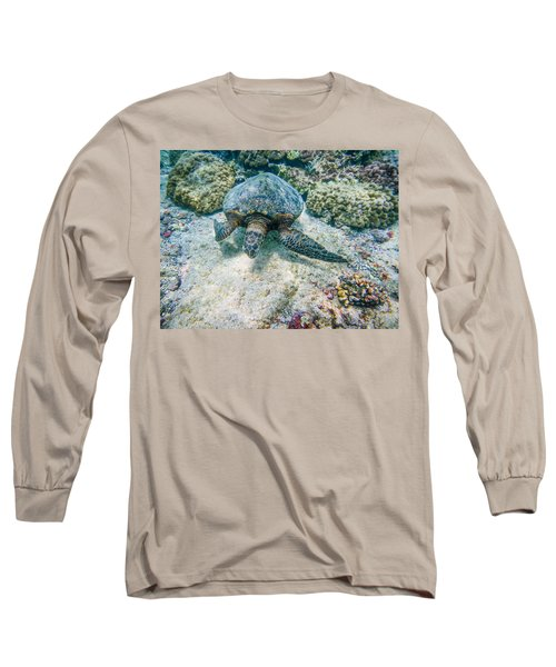 Swimming Turtle Long Sleeve T-Shirt by Denise Bird